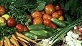 Свежие овощи для малыша с вашей дачи